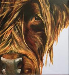 Skye - Highland cow