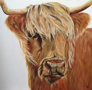 Matilda - Highland cow