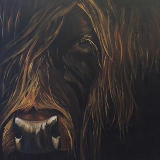 Misty - Highland cow