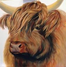 Morag the Highland cow