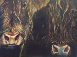 'Outof the Dark' - two Highland cows