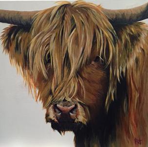 Primrose - Highland cow