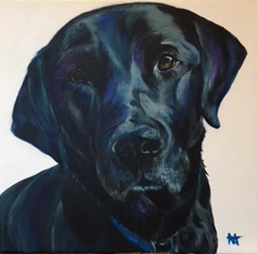 """Black Labrador, """"Blue"""""""